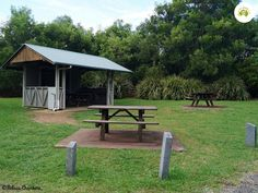 Settlement Campground in the Springbrook National Park
