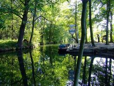 Spreewald: la fiabesca foresta della Sprea immersa tra i canali (FOTO)