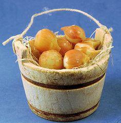 Bucket of onions