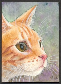 ORIGINAL ACEO RED TABBY GINGER CAT WATERCOLOR by SuzannesGallery