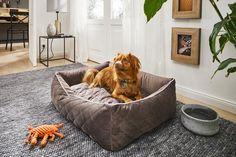 Het LABONI gestoffeerde bed OXFORD overtuigt door zijn verfijnde dubbelzijdige look van fijne gewatteerde stof en een eenvoudig ontwerp, dat ook in de gezellige omkeerbare matras is opgenomen en voor afwisseling zorgt. Yogurt Bites, Bean Bag Chair, Dogs, Furniture, Home Decor, Decoration Home, Room Decor, Pet Dogs, Beanbag Chair