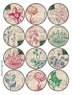 2.5 inch circles herbarium printable download digital collage sheet vintage images round label hang gift tag card no.230D. $4.00, via Etsy.