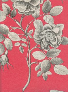 Etchings & Roses Wallpaper Black and pearlised white floral design on a corally red background