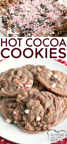 Hot Cocoa Cookies are full of hot cocoa mix, chocolate chips, crushed candy canes and marshmallow bits all baked into one delicious cookie! These hot chocolate cookies are simple to make and taste just like your favorite cup of hot cocoa! Chocolate Marshmallow Cookies, Chocolate Chip Shortbread Cookies, Toffee Cookies, Cocoa Cookies, Marshmallow Bits, Chocolate Chips, Brownie Cookies, Candy Cookies, Mini Marshmallows
