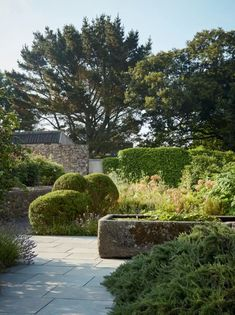 Dan Pearson Little Dartmouth garden | House & Garden