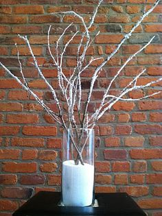 DIY Frosted Branches- winter decorating
