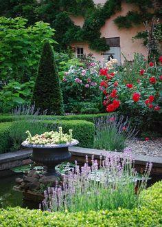 Nick Adams, Topiary Garden, David Austin Roses, Water Features In The Garden, Romantic Cottage, Water Garden, Stepping Stones, Outdoor Decor, Plants