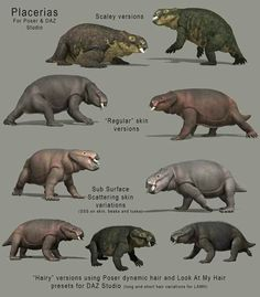 Placerias. These are synapsids, early mammalian animal type, that became extinct in the Cretaceous