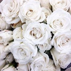 Find images and videos about white, flowers and rose on We Heart It - the app to get lost in what you love. Aesthetic Colors, Aesthetic Photo, Aesthetic Pictures, Aesthetic Roses, Gold Aesthetic, Aesthetic Anime, Aesthetic Backgrounds, Aesthetic Iphone Wallpaper, Aesthetic Wallpapers