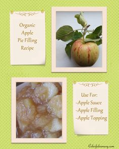 COLORFUL CANARY - Organic And Natural Living: Maple Apple Filling Recipe: A Must Have For The Holidays!