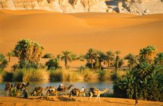 A marvel of nature, the lakes of Ounianga in the Sahara Desert have lasted thousands of years and withstood dramatic climate change. Desert Oasis, Desert Life, Casablanca, Beautiful World, Beautiful Places, Desert Pictures, Deserts Of The World, Morocco Travel, Deserts