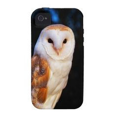 Barn Owl 2 Case-Mate iPhone 4 Cover.  $44.95