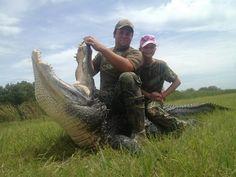 Florida Gator Hunting Florida Hog Hunting, Florida Gators, Elephant, Animals, Animales, Animaux, Animal, Animais, Elephants