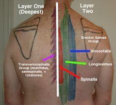 http://www.athletestreatingathletes.com/self-muscle-massage/self-muscle-massage-pt-11-mid-back/