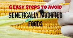6 Easy Steps to Avoid Genetically Modified Foods