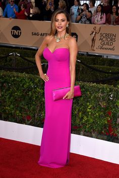Sofia Vergara in a Vera Wang dress, David Webb jewelry, and Jimmy Choo bag