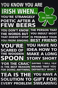 I don't think I'm Irish. so why do I fit all of these? Irish Proverbs, Irish Eyes Are Smiling, Irish Culture, Irish Pride, Celtic Pride, Irish American, American Women, American Art, American History
