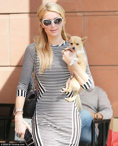 Paris Hilton brought along her chihuahua Peter Pan for a stop at celebrity eyebrow studio Anastasia Beverly Hills on June 6, 2014 http://dailym.ai/1oDCghG