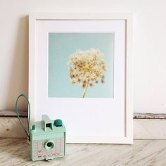 luminous photographic print by cassia beck photography | notonthehighstreet.com