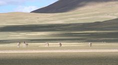 Chang Tang, Tibet- Swedish explorer Sven Hedin, in a crossing of Chang Tang, reported not seeing a single person for 81 days. It's a part of the remote Tibetan Plateau