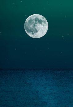 nightswim