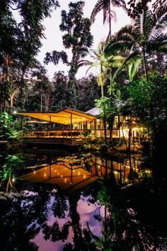 Stay in the rainforest at Daintree Eco Lodge & Spa in tropical North Queensland. Click to see more photos or hold your room in now!