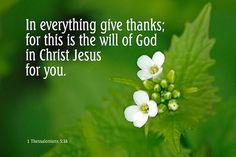 16/4/15 1 Thessalonians 5:18