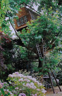 Treehouse #treehouse #tree_house Gainza Treehouse (Biarritz/ France)