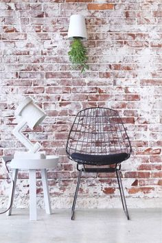 Pastoe design chair, brick wall, hanging plant