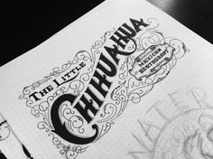 Typeverything.com  The Little Chihuahua logo concept by Drew Melton // Hand Lettering // Design