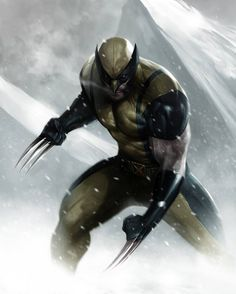 Wolverine by Francesco Mattina