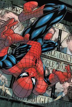 New Spiderman Cartoon Images