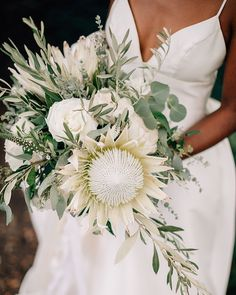 Tropical Wedding Bouquets, Protea Wedding, Rose Wedding Bouquet, White Wedding Bouquets, Diy Wedding Flowers, Bridal Flowers, Wedding Ideas, Tropical Weddings, Bridal Bouquets