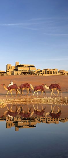 **Desert near Abu Dhabi ~ http://VIPsAccess.com/luxury-hotels-dubai.html