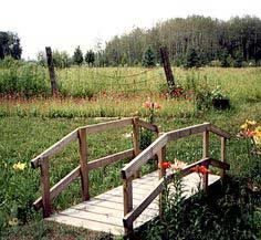A Bridge Out Of Pallets   Google Search Pond Bridge, Garden Bridge, Garden  Paths