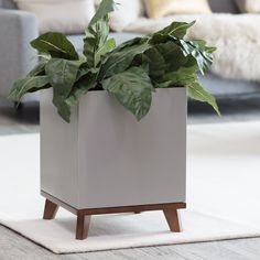 Madiera Aluminum Cube Planter with Hardwood Base - Planters at Hayneedle Diy Concrete Planters, Modern Planters, Indoor Planters, Cement Bench, Wall Planters, Cement Tiles, Succulent Planters, Indoor Gardening, Succulents Garden