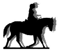 """Keeping A Horse's Attention -""""Horse training is a mental game played in a physical medium."""" So true."""