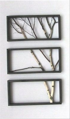 Framing and reframing because the picture of the tree is captured by three ways