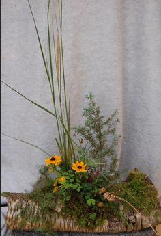 vegetativ stil florist - Sök på Google