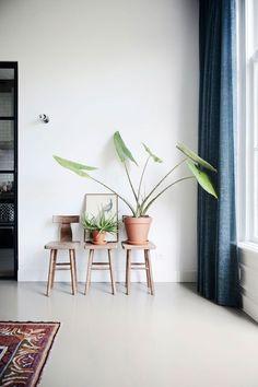Urban Jungle // Onze Pasta gietvloer in de kleur Slib - Healty fitness home cleaning Ornamental Plants, Types Of Houses, Modern Interior Design, Decoration, Interior Inspiration, Sweet Home, House Design, Flooring, Room