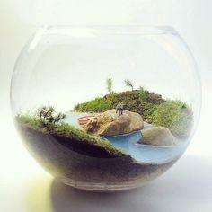 Petite Green - We create miniature worlds Mini Terrarium, Miniature Terrarium, Terrarium Plants, Succulent Terrarium, Miniature Fairy Gardens, Fairy Terrarium, Little Gardens, Small Gardens, Moss Garden