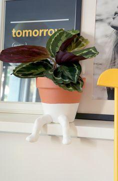Veja como fazer vaso de planta divertido de forma simples, sem gastar muito e com um resultado encantador. Confira o passo a passo!