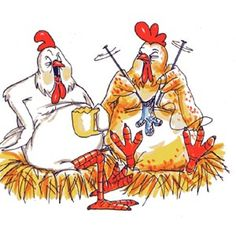 Two chickens sitting on nests, one knitting, one drinking tea
