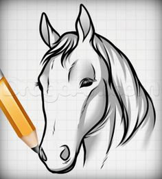 Draw Horse Heads And Faces, Step by Step, Drawing Guide, by Dawn Horse Face Drawing, Horse Face Paint, Cool Face Paint, Horse Drawings, Simple Horse Drawing, Easy Drawing Steps, Easy Drawings, Christmas Face Painting, Horse Portrait