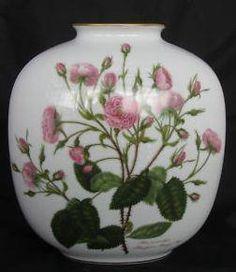 Classic Rose Portugal Rose 28 cm
