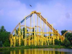 Dominator at Geauga Lake (Batman: Knight Flight when it was Six Flags) Geauga Lake Amusement Park, Ohio Amusement Parks, Amusement Park Rides, Abandoned Amusement Parks, Roller Coaster Ride, Roller Coasters, Abandoned Theme Parks, Abandoned Places, Cedar Point