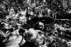 photographer sebastiao salgado - Google Search