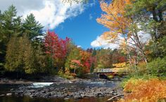 Fall colours at Oxtongue Rapids in Dwight, ON. Photo by Kim Riley.
