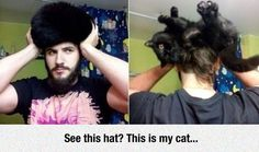 Spoiler Alert: It's Not A Hat