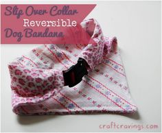 Top 10 Lovely DIY Pet Collars - love the handkerchief and paracord collars